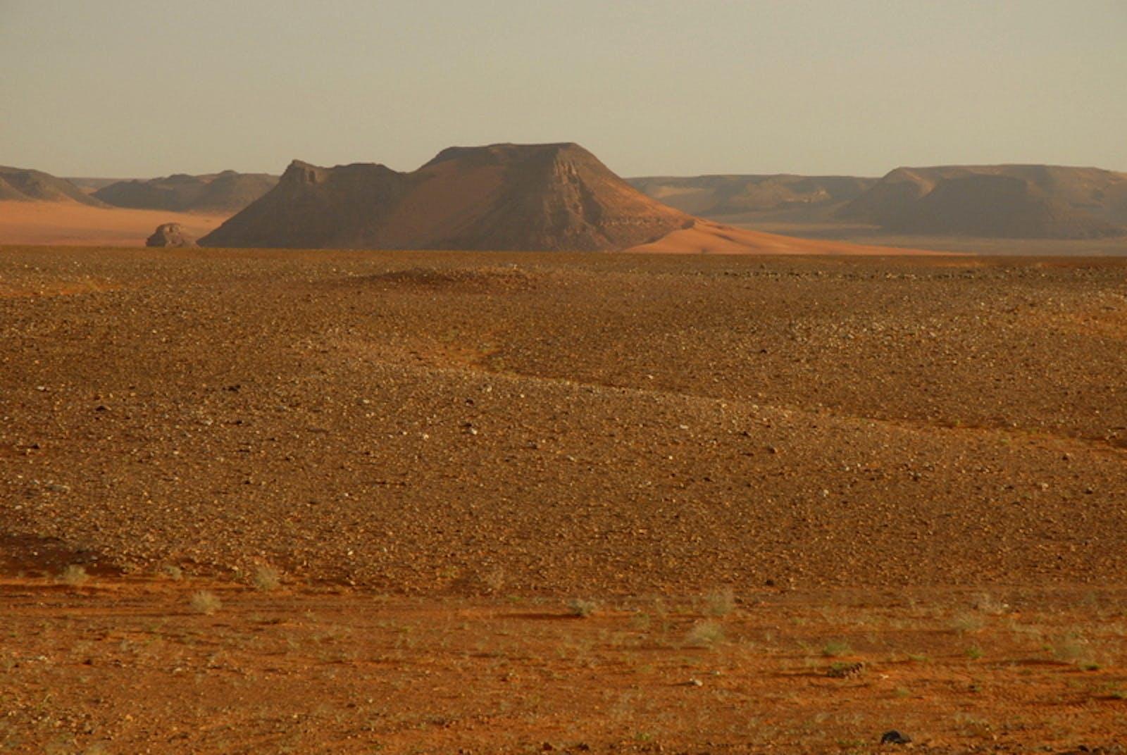 North Arabian Desert