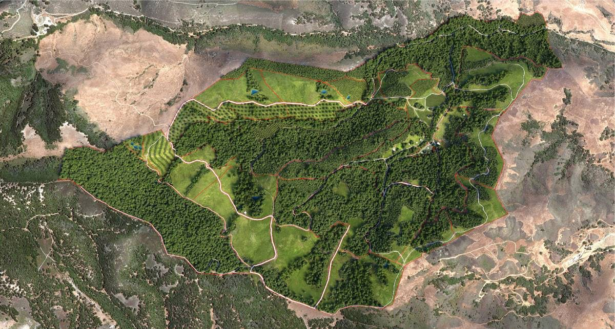 Aligning Agriculture and Conservation at the Jalama Canyon Ranch Center in California