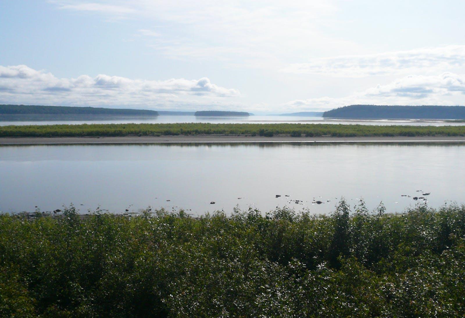 Muskwa-Slave Lake Taiga