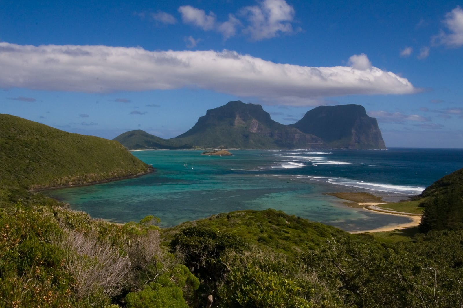 Lord Howe Island Subtropical Forests
