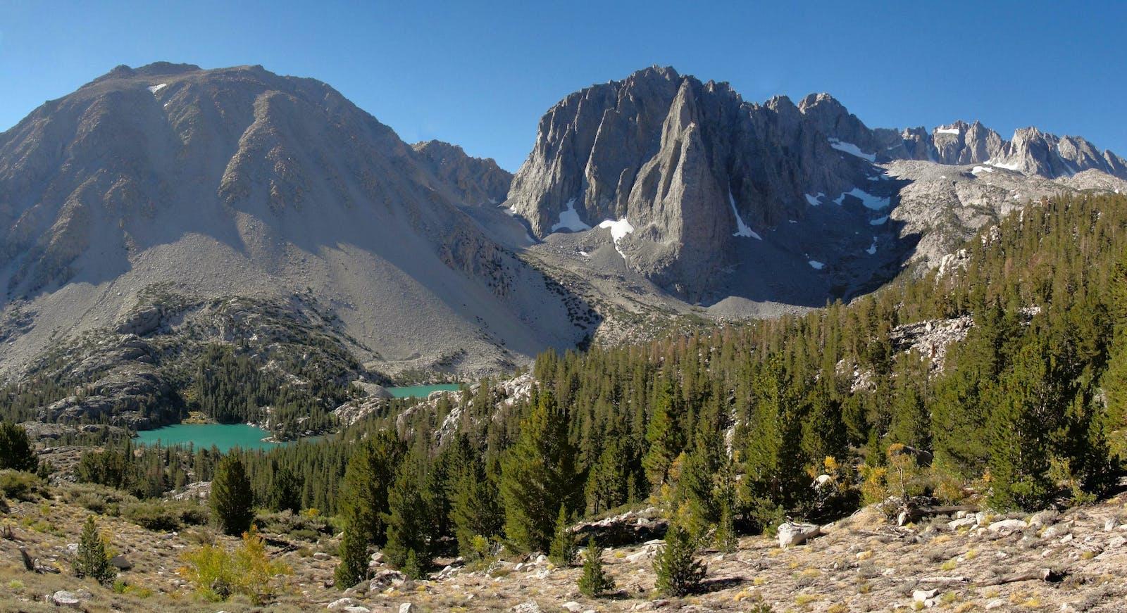 Sierra Nevada Forests