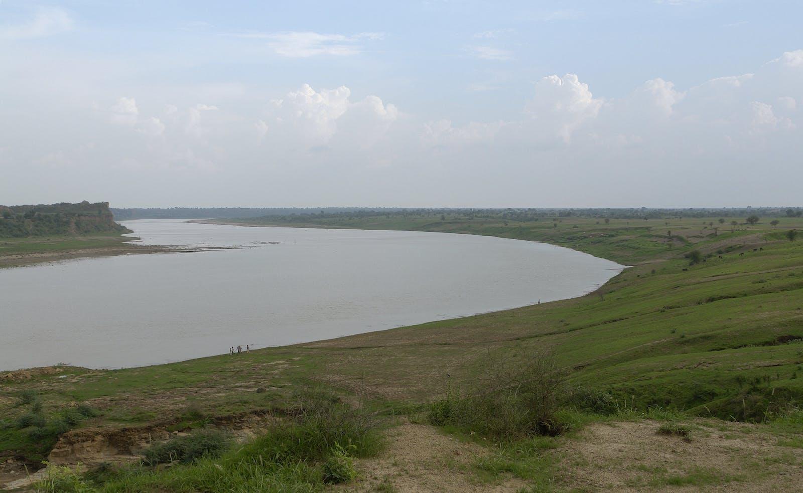 Upper Gangetic Plains Moist Deciduous Forests