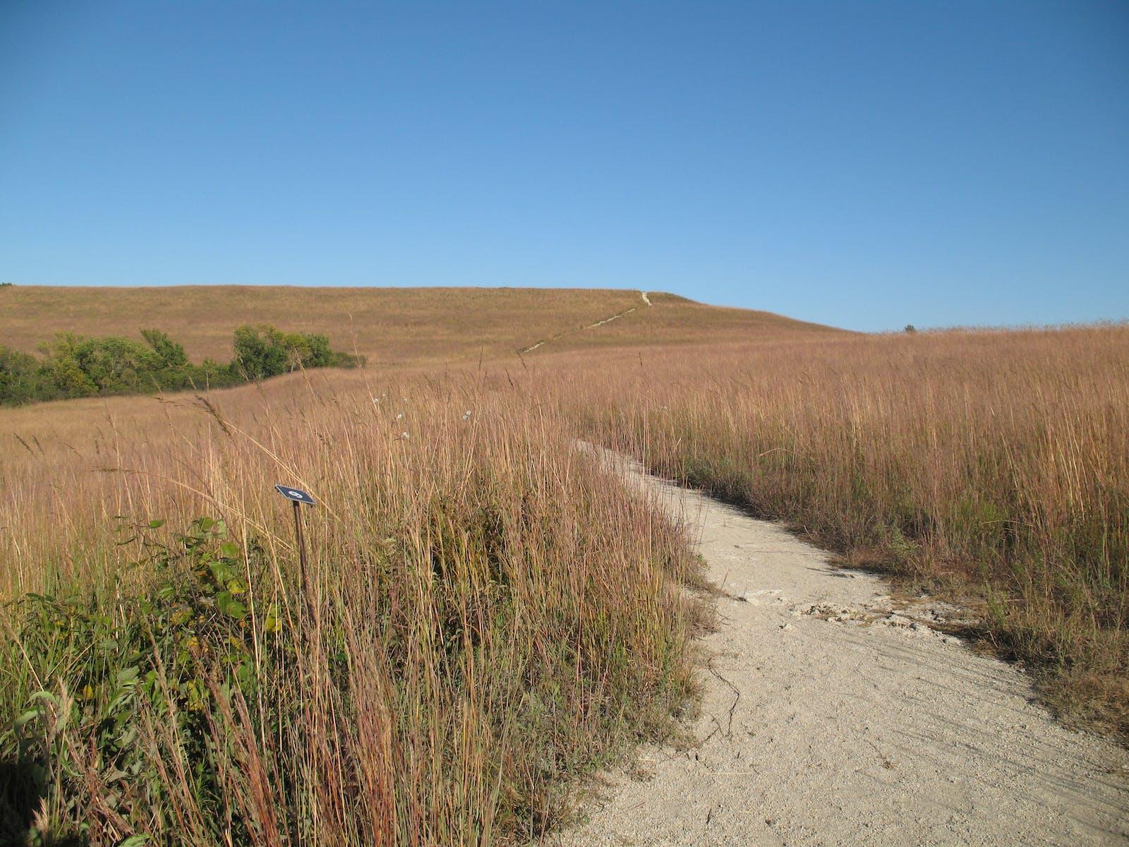 Flint Hills Tallgrass Prairie