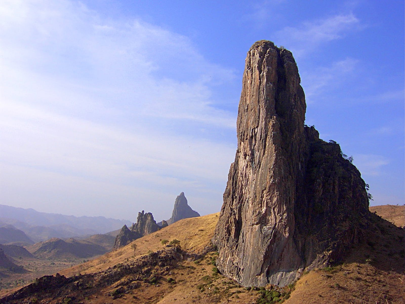 Mandara Plateau Woodlands