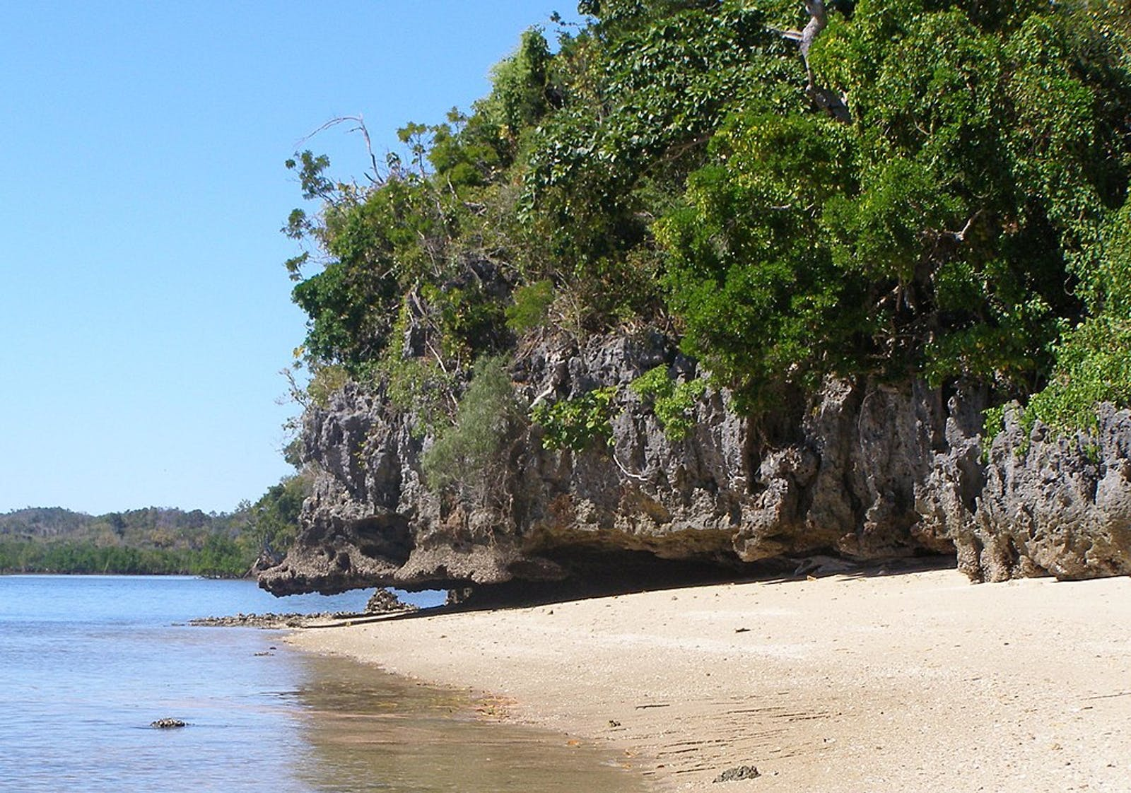 Madagascar Dry Deciduous Forests