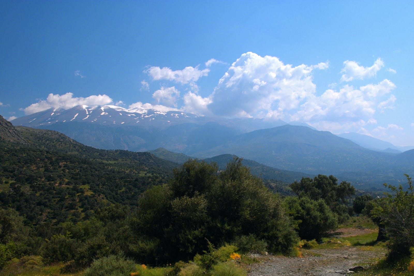 Crete Mediterranean Forests