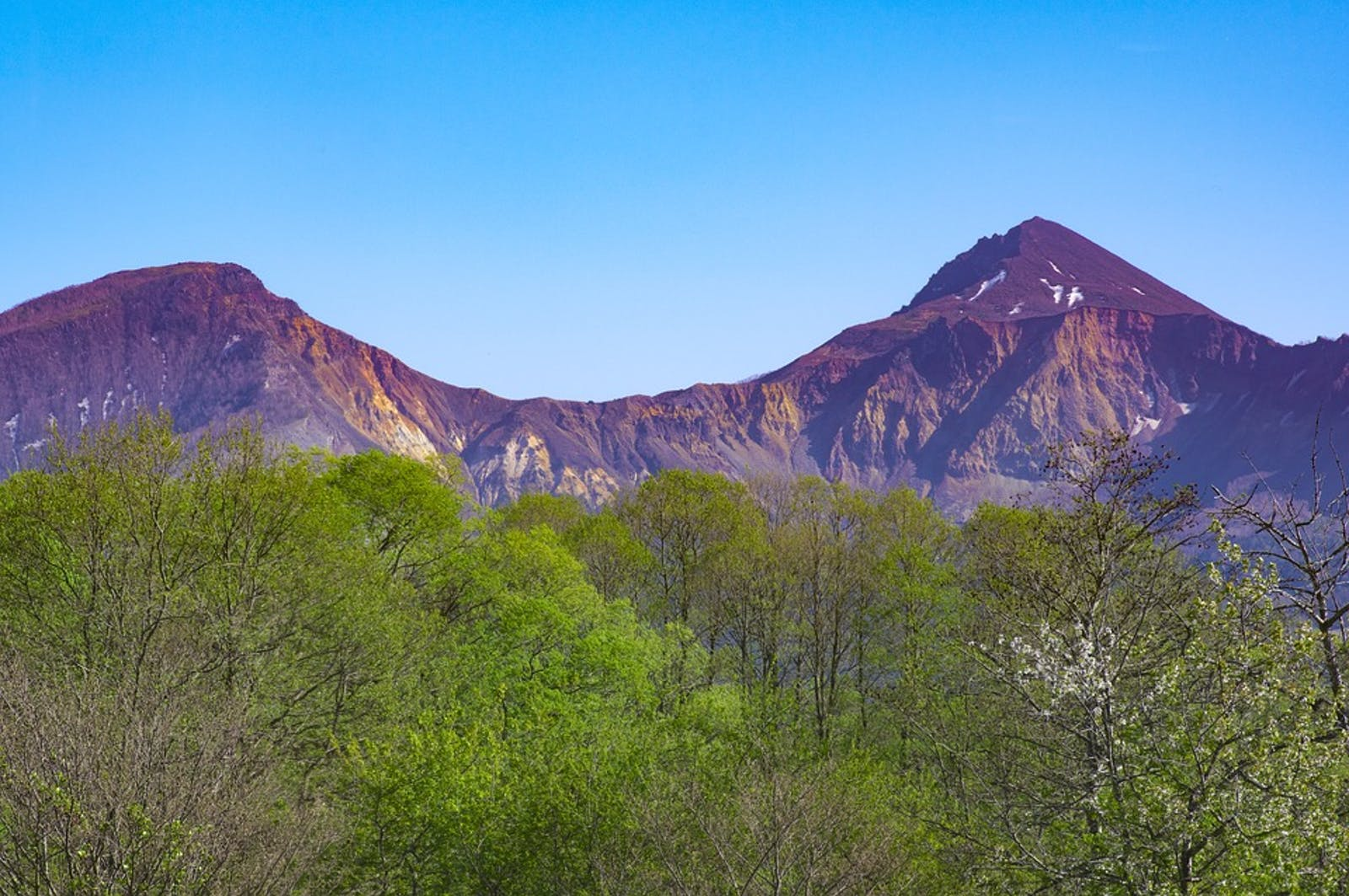 Nihonkai Montane Deciduous Forests