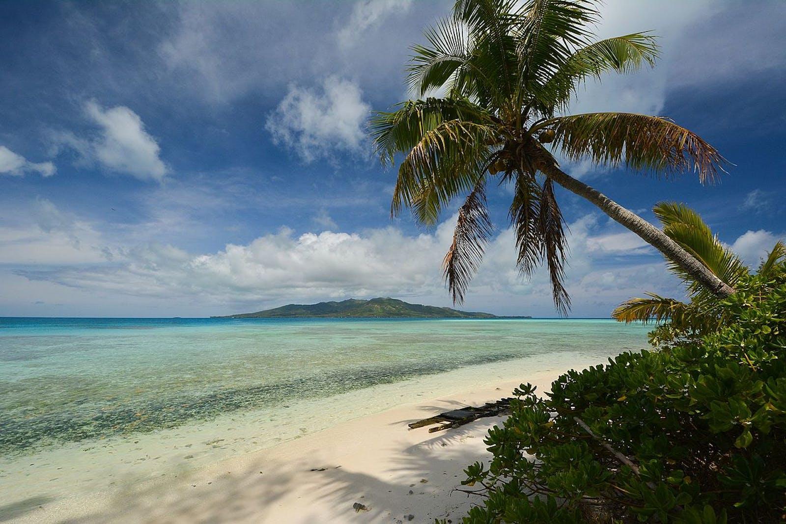 Tubuai Tropical Moist Forests