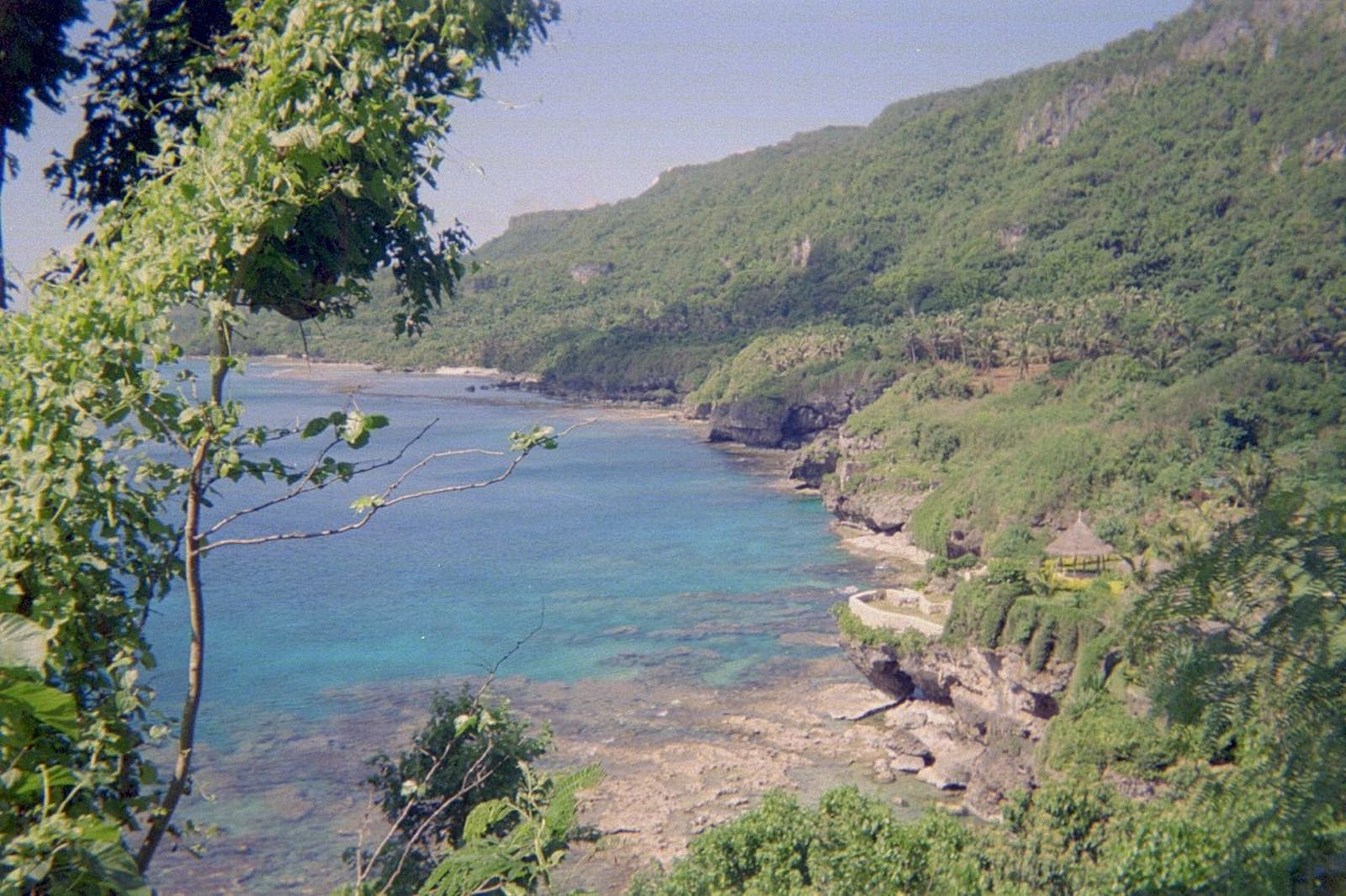 Marianas Tropical Dry Forests