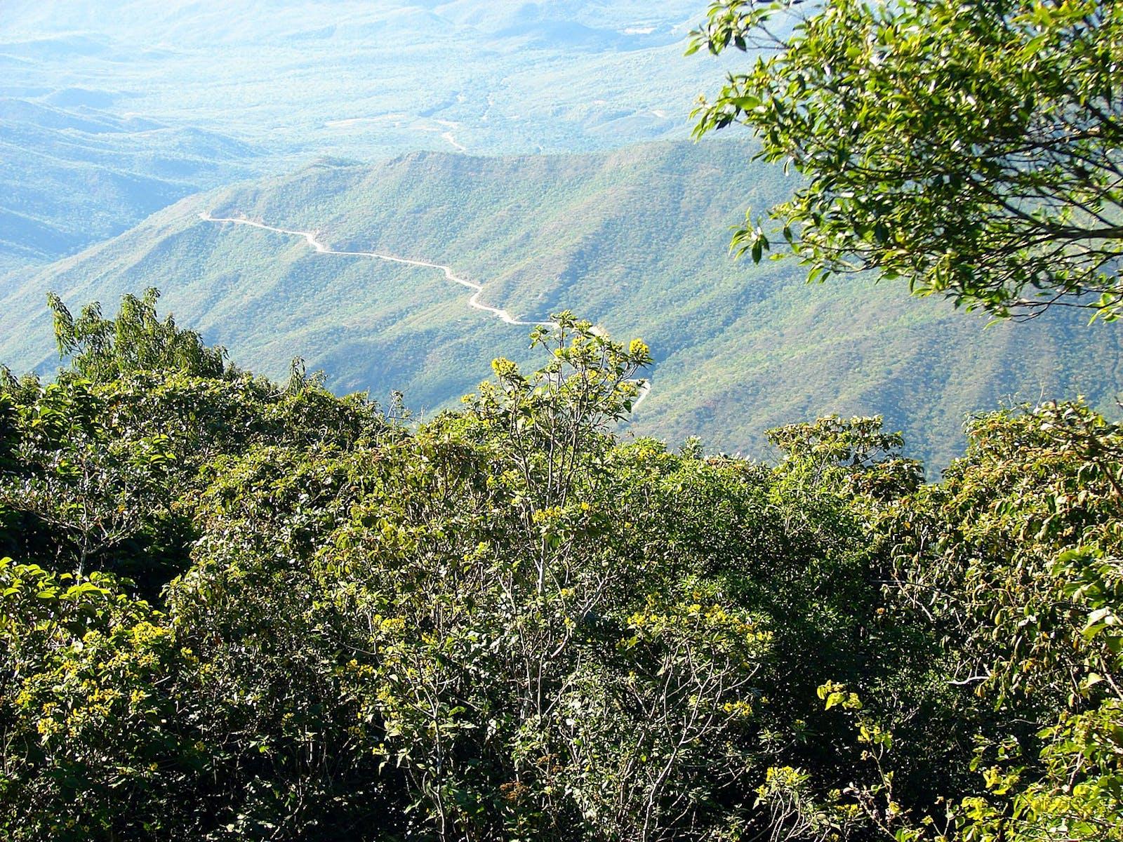 Lara-Falcón Dry Forests