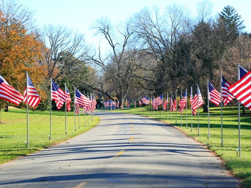 Flags of Honor (11/7-11/13/2021)