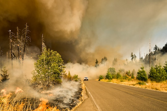 A car drives through a wild fire during the Jones Fire in Oregon.
