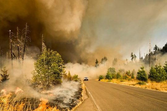 A car drives through a wild fire during the Jones Fire in Oregon.