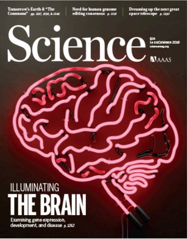 Cover of Science magazine for the PsychENCODE issue