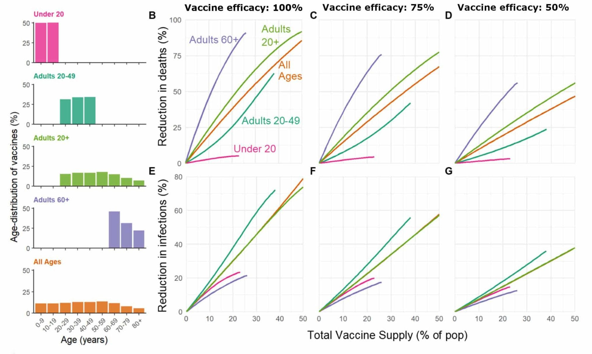 Vaccine rollout scenarios developed by Bubar et al. include five different ways of distributing the first doses of vaccines, presented in the left panel. The scenarios show the same pattern: to prevent deaths, vaccinate the elderly first, and then move on to other, healthier groups or the general population.