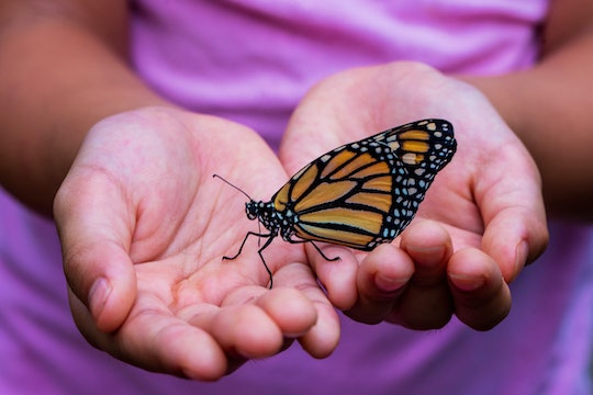 A child holding an orange and black monarch butterfly in their hands