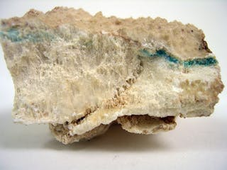 A piece of gypsum with a green streak characteristic of cyanobacteria.