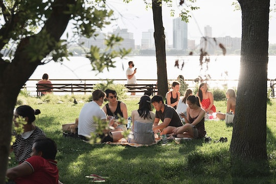 people having a picnic in a park with a city skyline in the far background