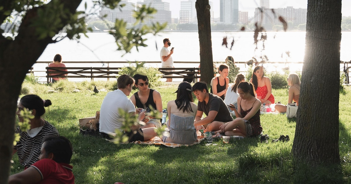 Doctors can use a person's descriptions of a picnic scene to measure their language skills after a stroke