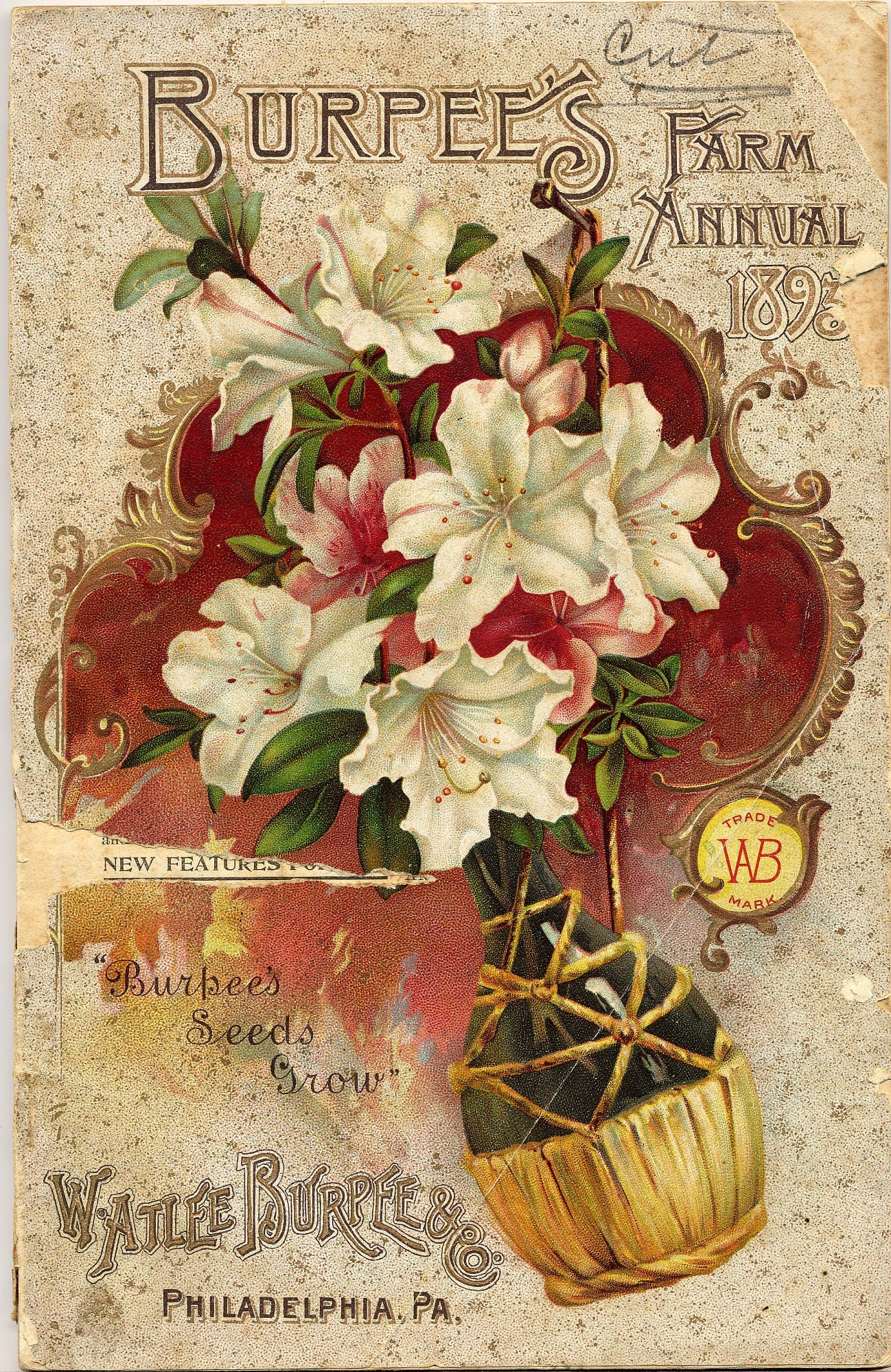 seed catalog image with flowers