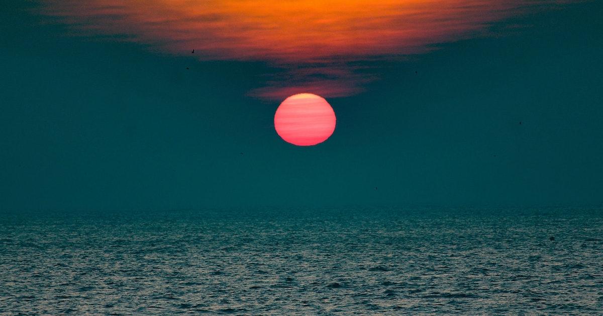 "Ocean heatwaves like ""The Blob"" cause lasting damage to marine ecosystems"