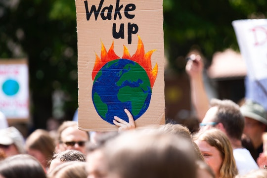 "A sign that reads ""Wake Up"" above a picture of planet Earth on fire, being held up at a protest."