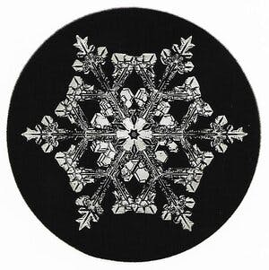 "intricate ""classic"" looking snowflake"