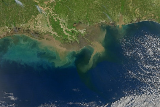 The Gulf of Mexico from space, showing sediment running into the ocean and different colors of water