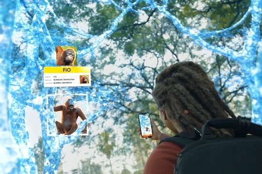 person playing a game on their phone surrounded by holographic trees and an orangutan