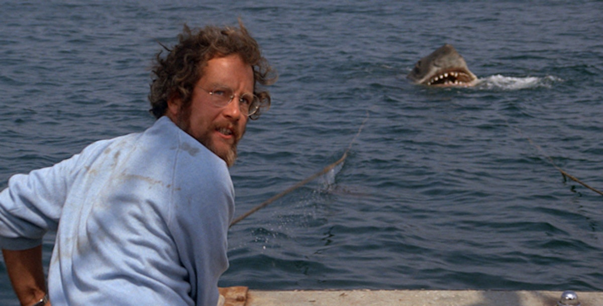 How Shark Week hurts the very creatures it celebrates