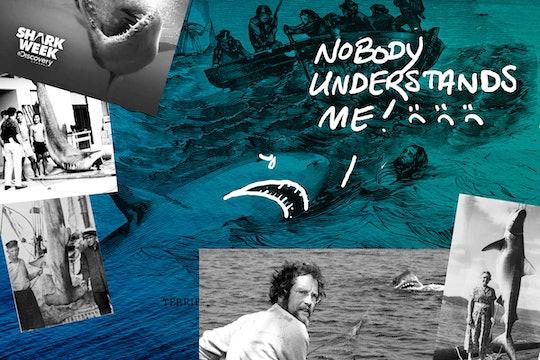 shark week collage