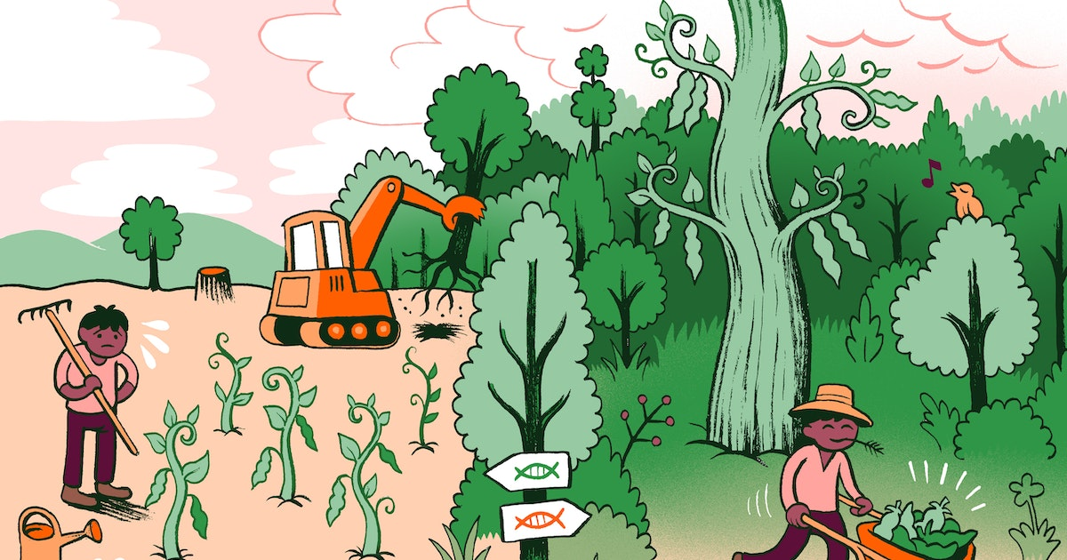 GMOs are better for the environment than you'd think