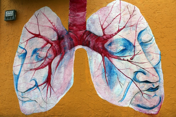 artistic depiction of a pair of lungs painted on a yellow wall