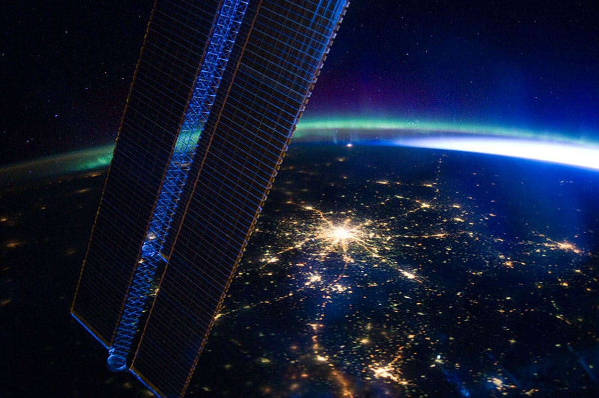 Is light pollution changing how plants do – and don't – grow?