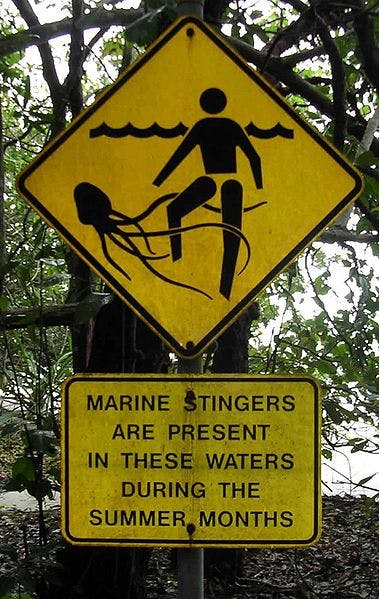 sign about jellyfish stings
