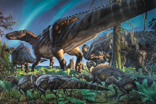 Ugrunaaluk kuukpikensis, a type of hadrosaur, a duck-billed dinosaur.