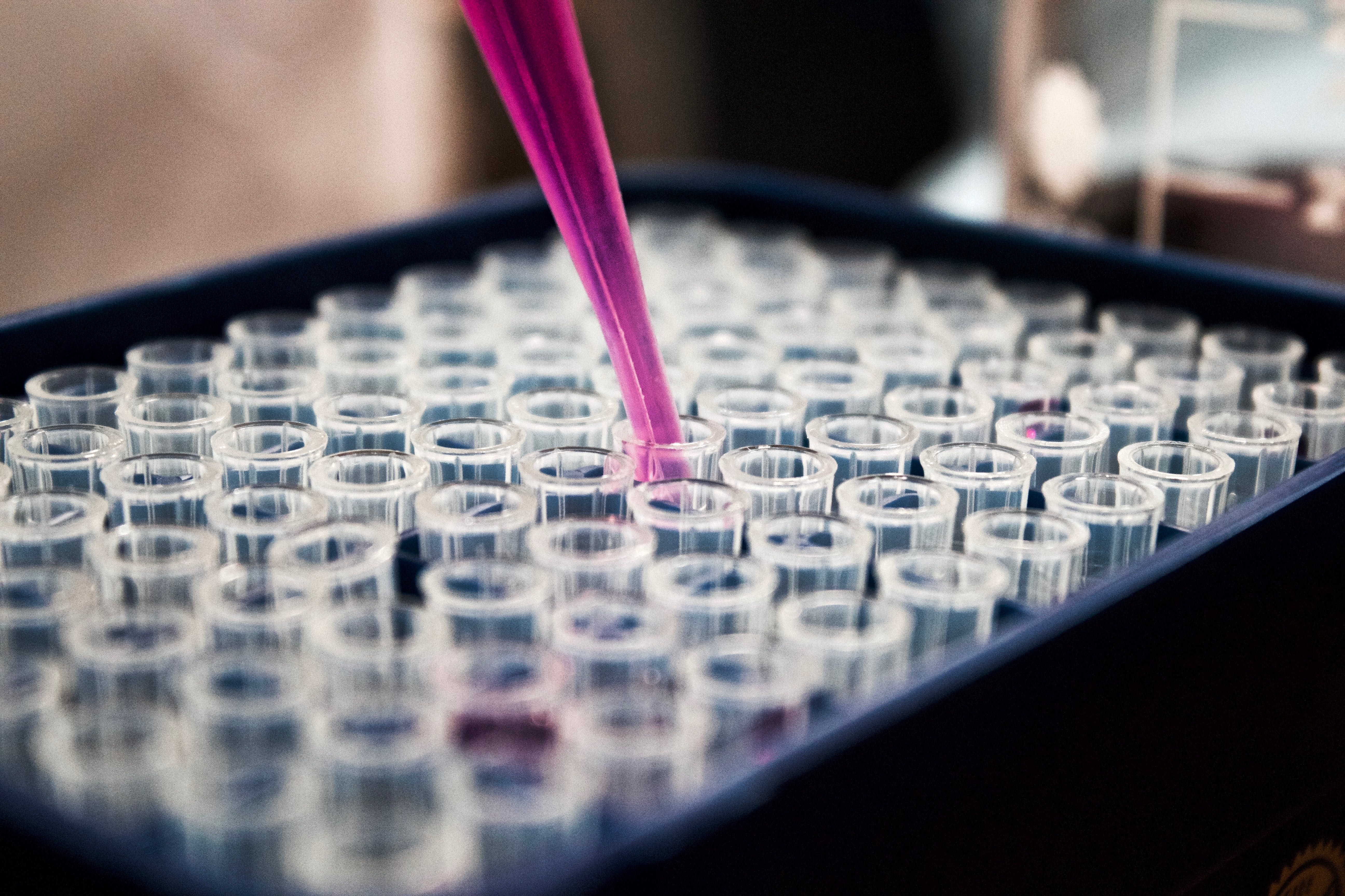 pipette with pink liquid