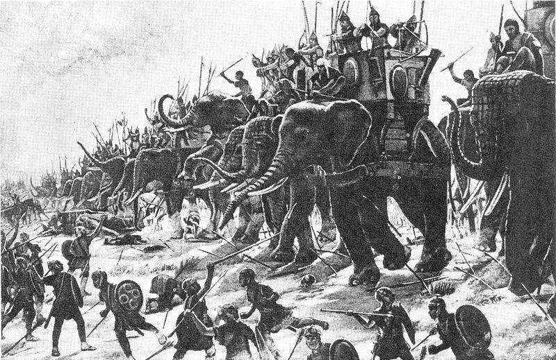 Hannibal's war elephants in the Second Punic War.