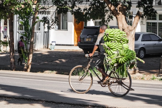 man on bicycle with bunch of bananas