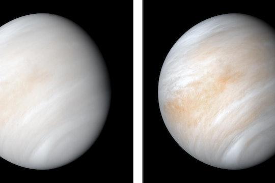two views of the planet venus