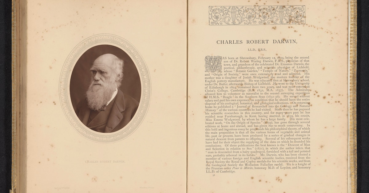 Has evolution changed? Asking experts how Darwin's theories hold up in modern science