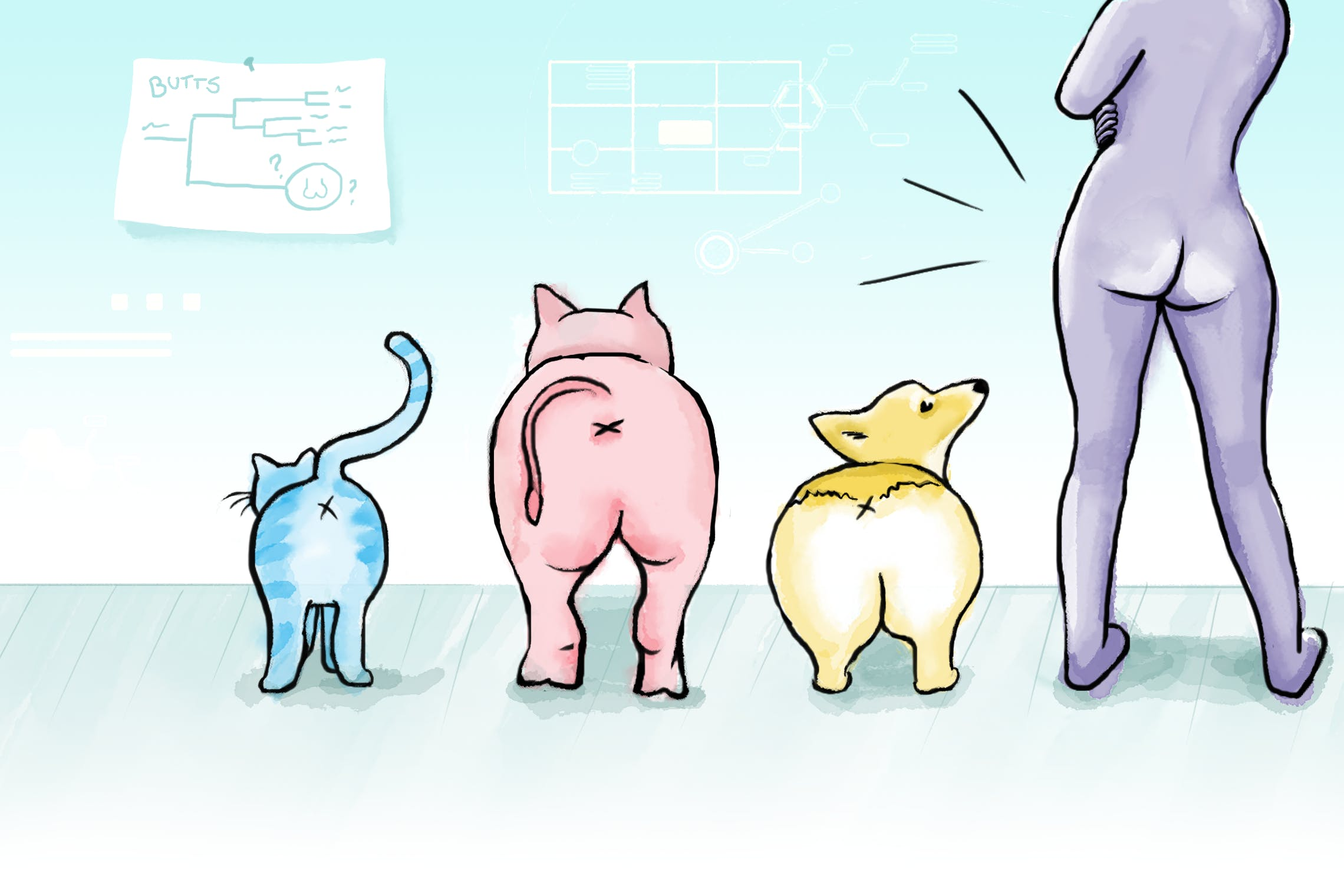 A cat, pig, dog, and human seen from the back, so their butts are most visible