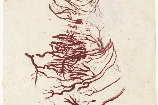A drawing of the blood vessels of the heart.