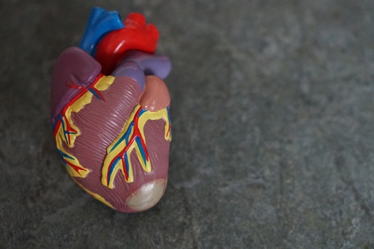 model heart against a gray background