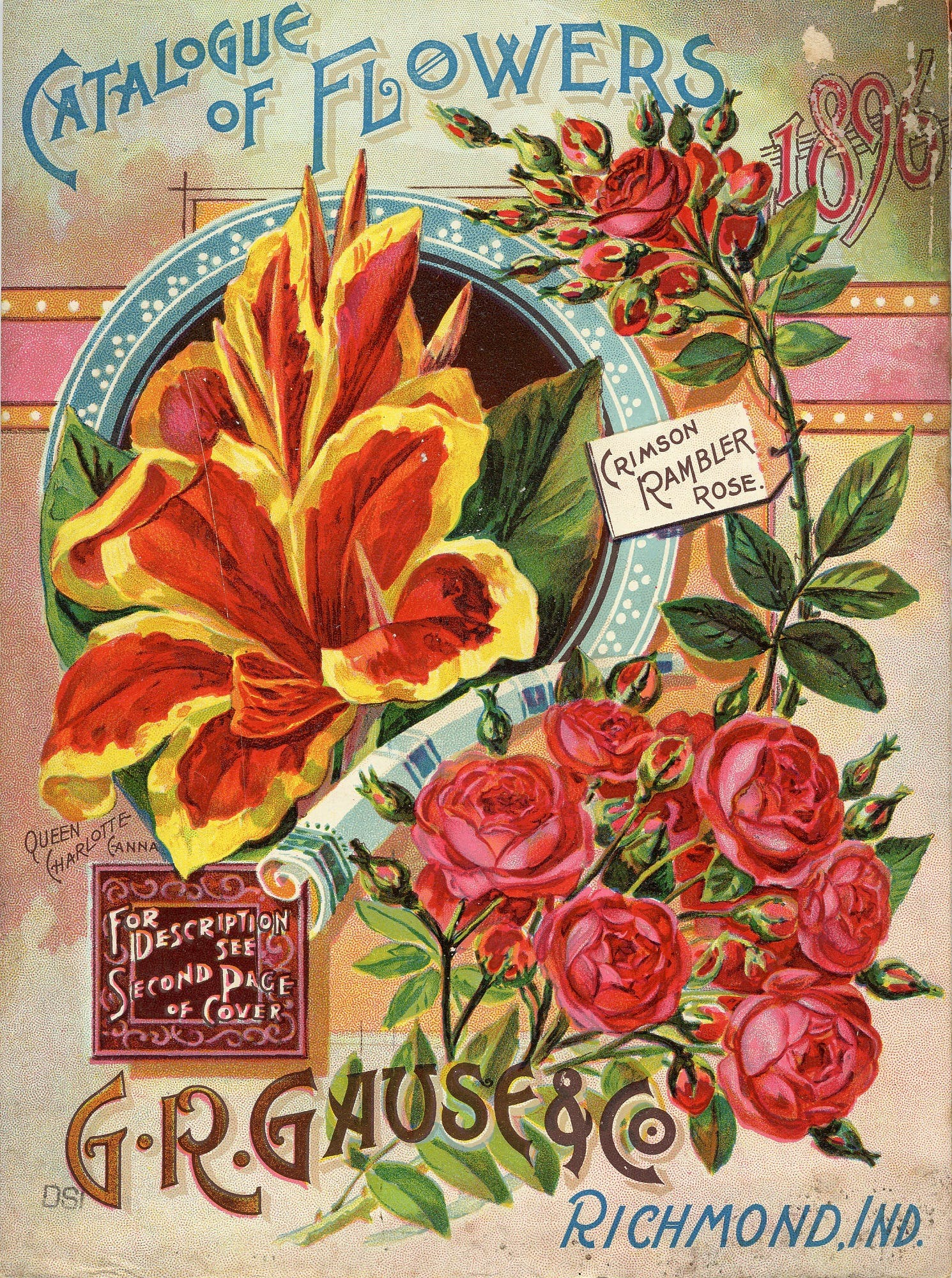 seed catalog image of flowers