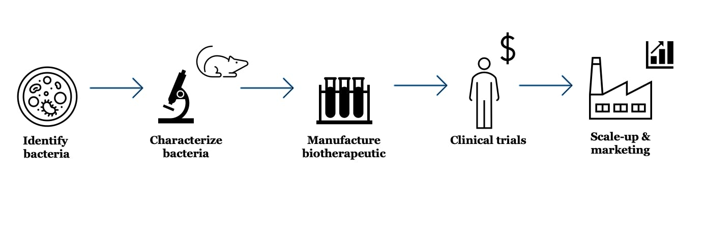 a diagram depicting a process moving from identifying and characterizing bacteria, to manufacturing treatments, to clinical trials, to scaling up and marketing a drug
