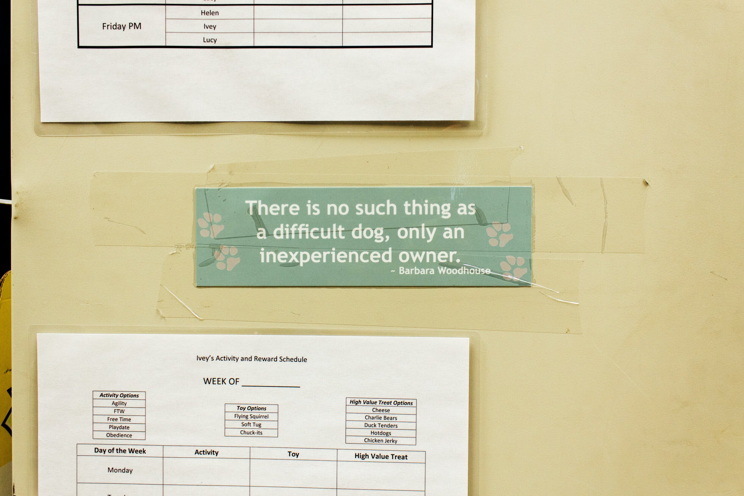 "A sign on the wall that reads ""There is no such thing as a difficult dog, only an inexperienced owner."""