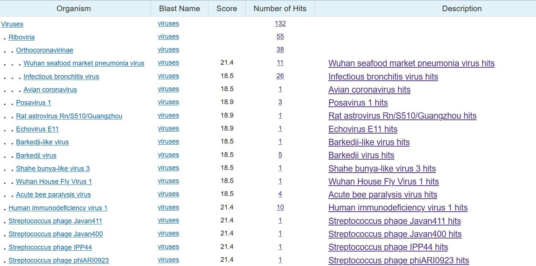 hpv genom szekvencia