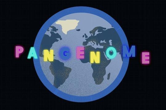 the human pangenome