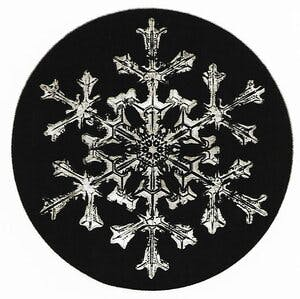 intricate snowflake with thin decorated arms